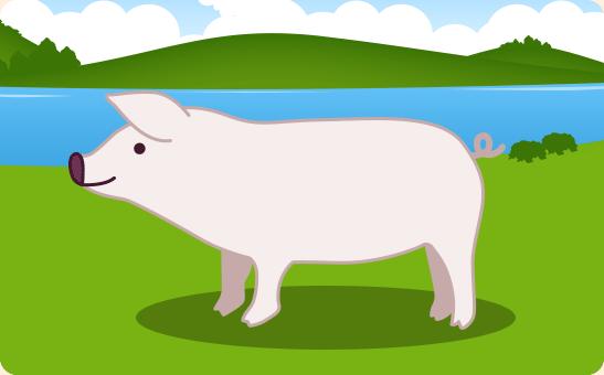 おらがくにのいなか豚